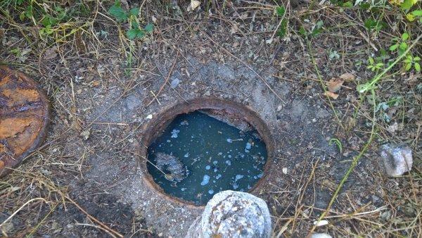 Vaciado y limpieza de fosas sépticas en Torrent