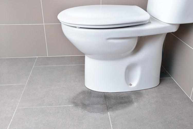 Desatascar bajantes de WC en Torrent